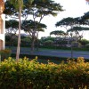 The Palms at Wailea - Photo #12