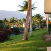 The Palms at Wailea - Photo #11